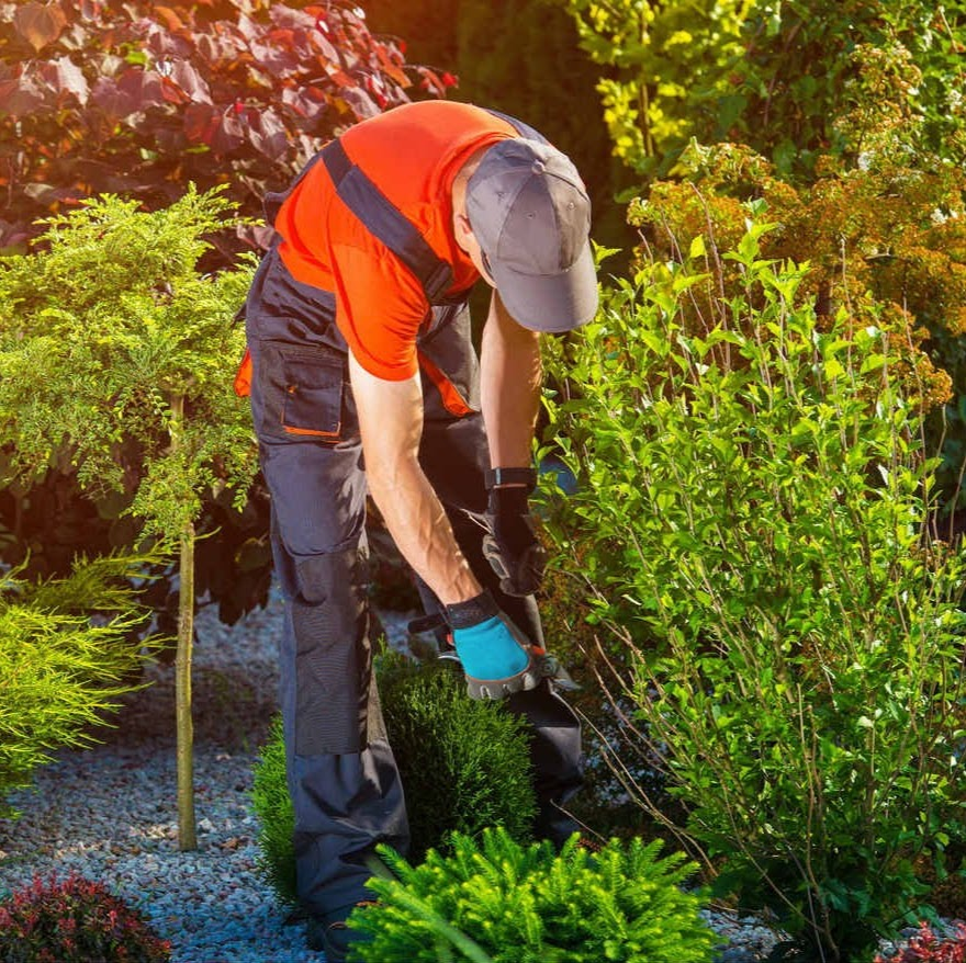 Sunrise Yardcare & Construction LLC - Professional Landscape Maintenance and Retaining Walls | Gresham, OR, 97030 | +1 (503) 433-3890