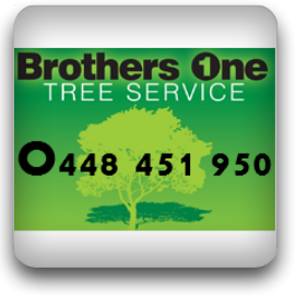 Brothers One Stump Removal Newcastle | Grinding | Land Clearing | 14 The Crescent, Wallsend, Newcastle, New South Wales 2287 | +61 448 451 950